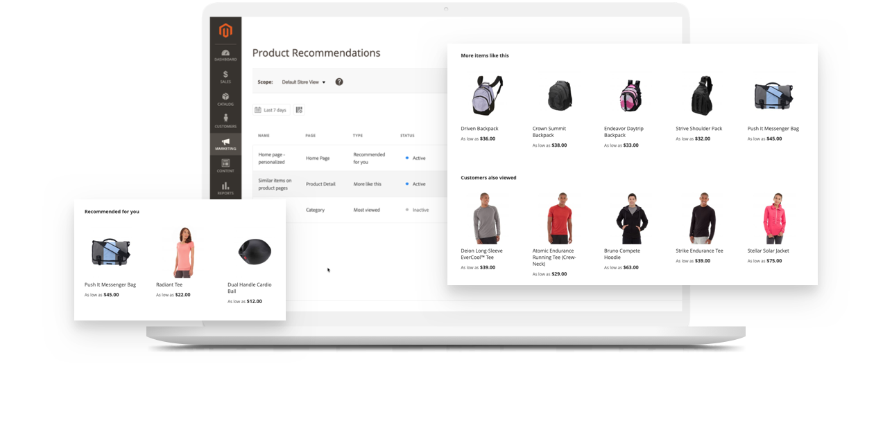21989 dx Solutions Page Small Business why magento image