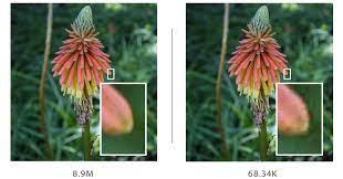 compression image core web vitals